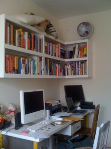 Completed Shelving Unit